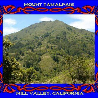 """MT. TAMALPAIS- """"VARIETY ON MT. TAMALPAIS"""""""