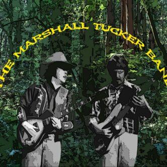 "THE MARSHALL TUCKER BAND- ""A NEW LIFE"" (1974)"